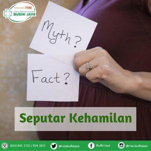 Mitos & Fakta Seputar Kehamilan